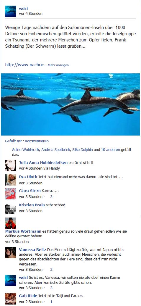 delfine beobachten mallorca